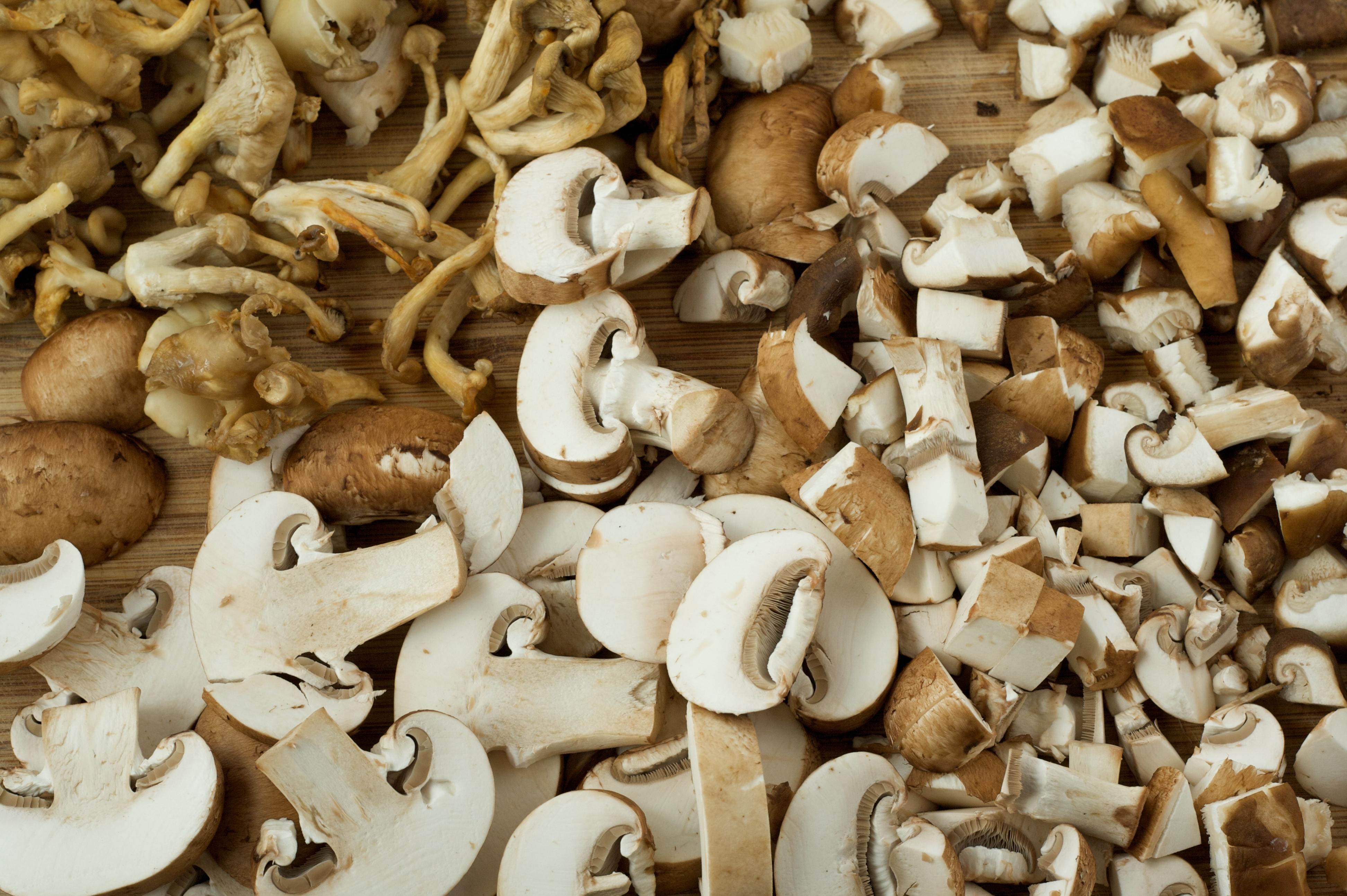 mushroom chowder broccoli mushroom chowder crab and mushroom chowder ...