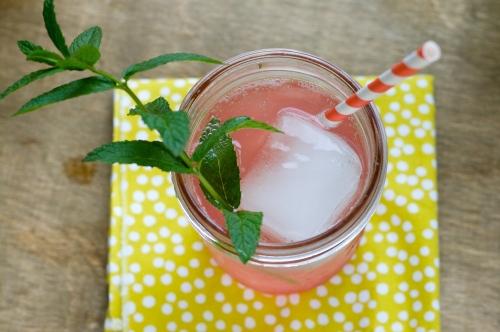 Rhubarb-Mint Sodas|Spoonwithme-com (4)