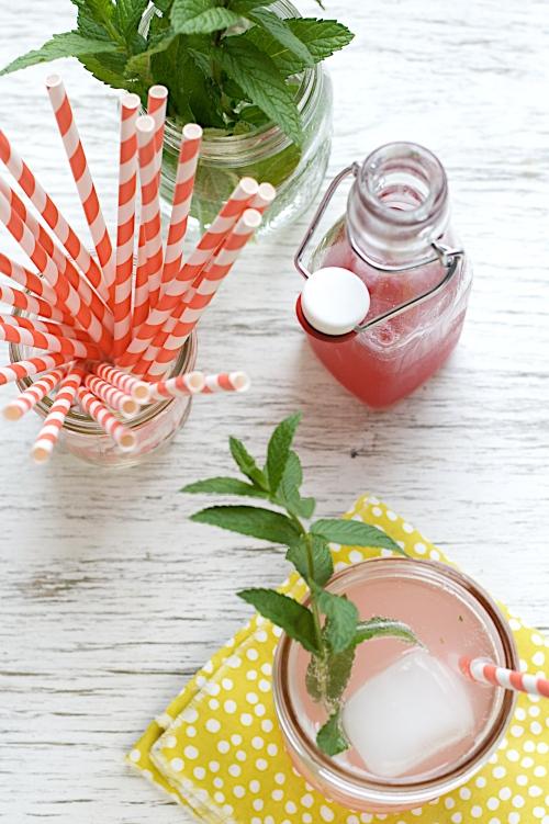 Rhubarb-Mint Sodas|Spoonwithme-com (5)
