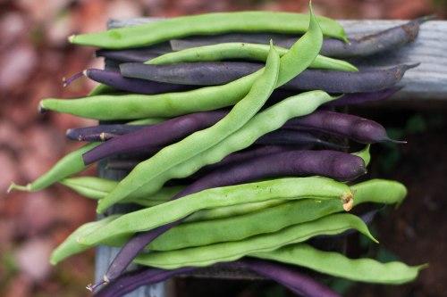Asian Quinoa Salad | Spoonwithme.com-10
